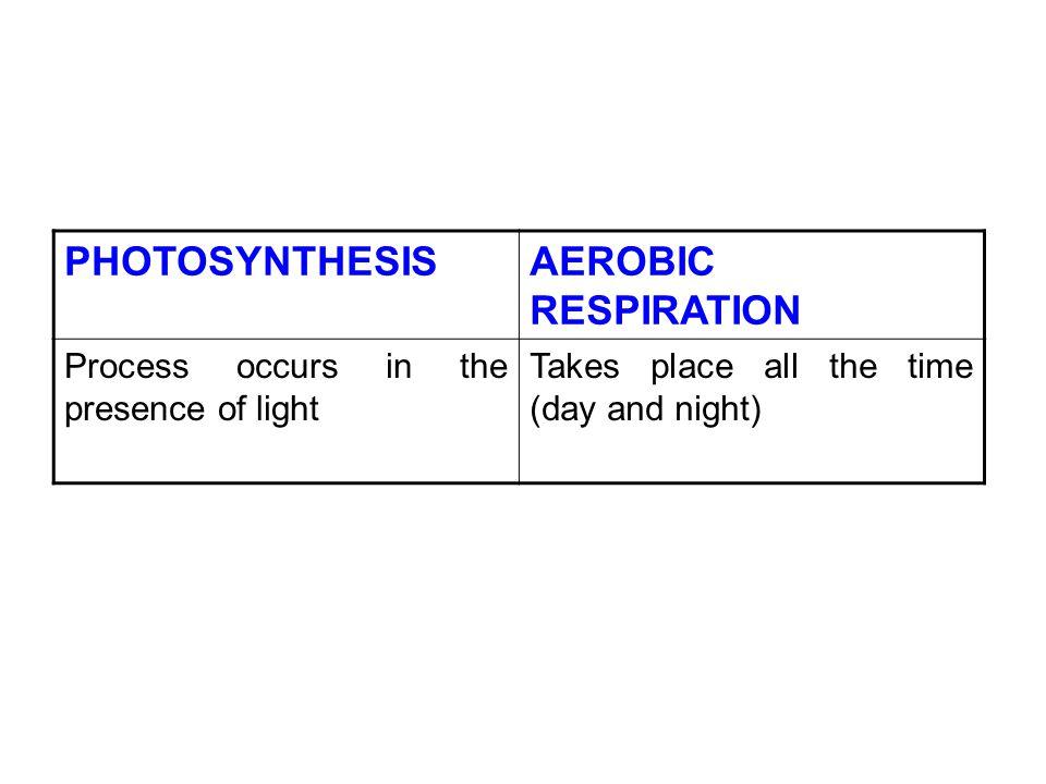 PHOTOSYNTHESIS AEROBIC RESPIRATION