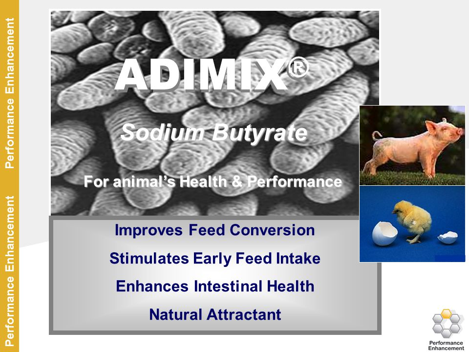 ADIMIX® ADIMIX® Sodium Butyrate For animal's Health & Performance