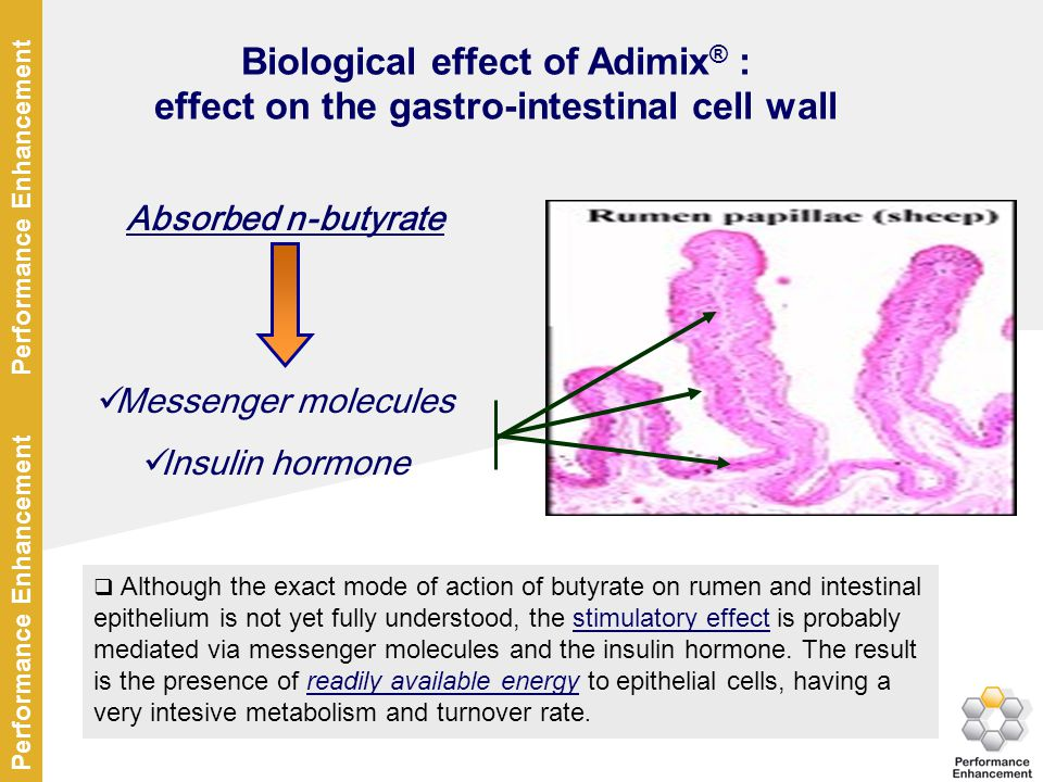 Biological effect of Adimix® :