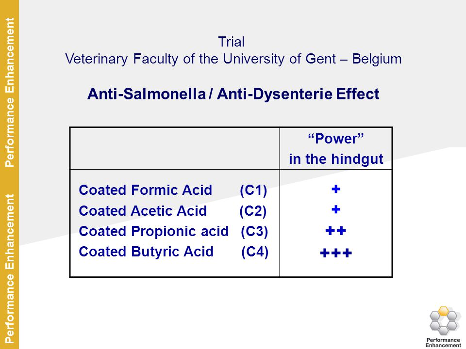 Anti-Salmonella / Anti-Dysenterie Effect