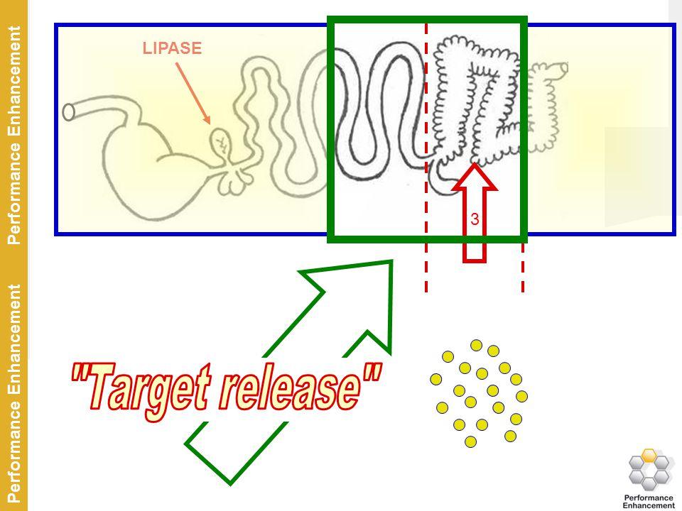 Target release LIPASE 3