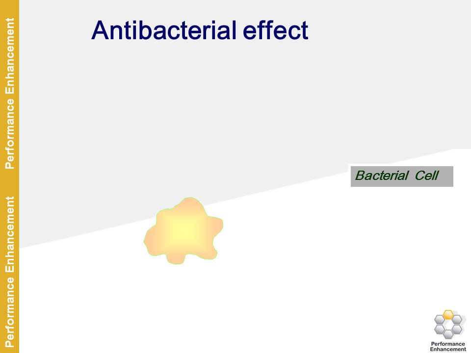 Antibacterial effect Stop of DNA transcription