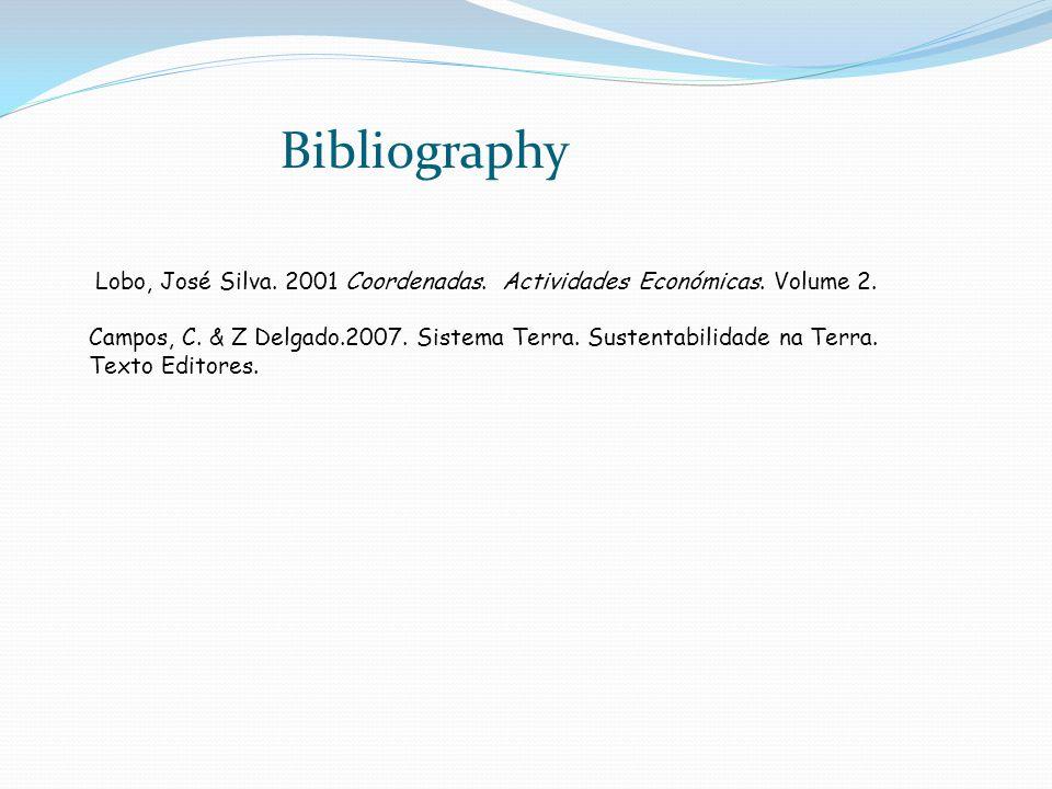 Bibliography Lobo, José Silva. 2001 Coordenadas. Actividades Económicas. Volume 2.