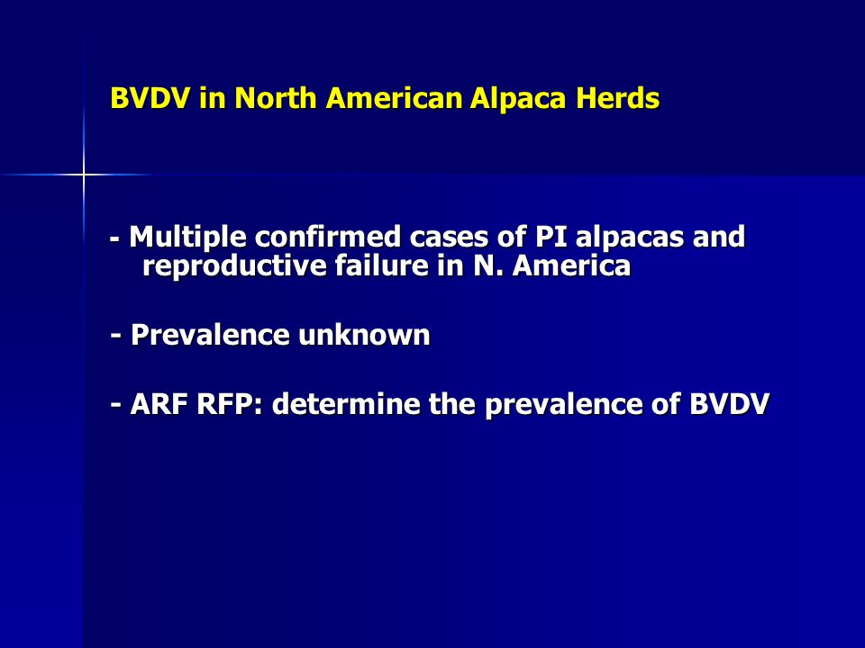 BVDV in North American Alpaca Herds
