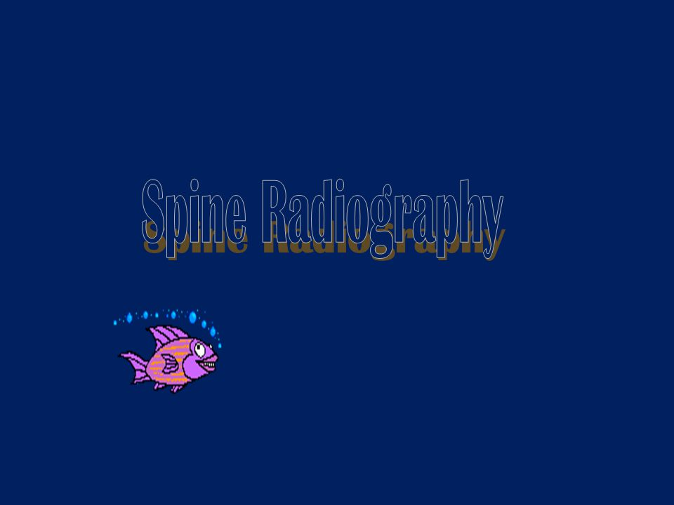 Spine Radiography
