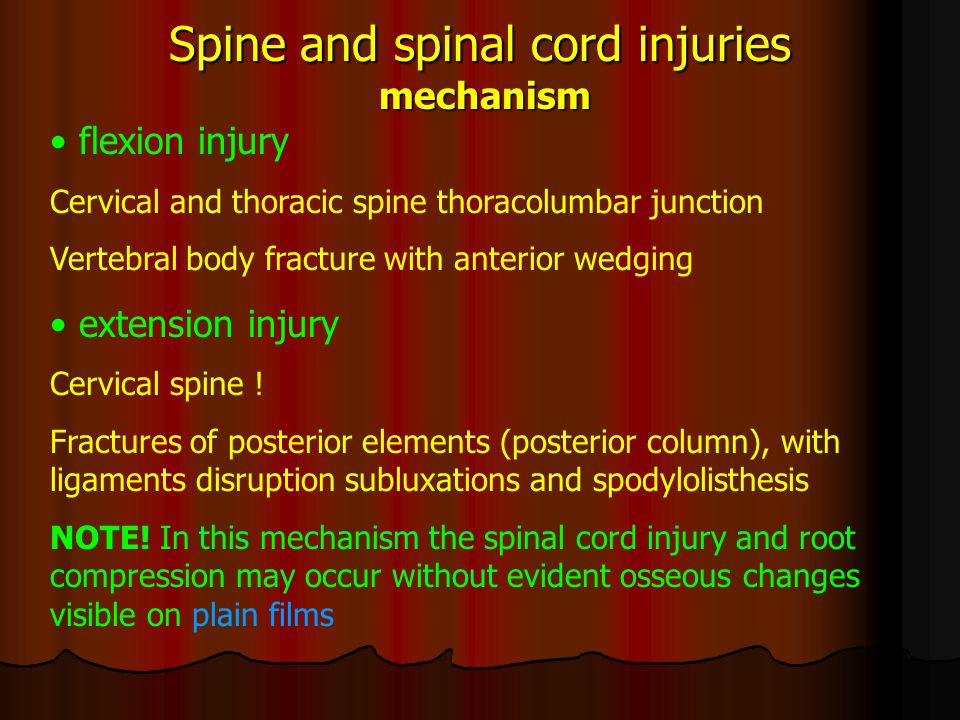 Spine and spinal cord injuries mechanism