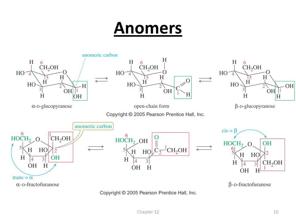 Anomers Chapter 12