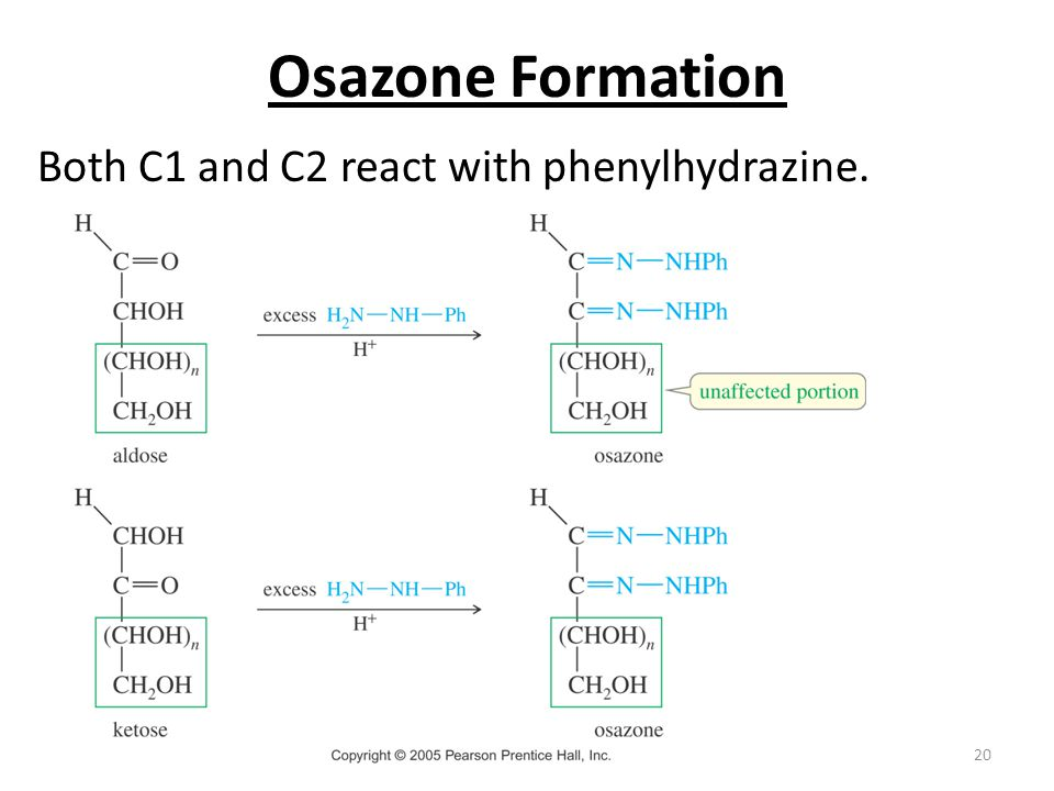 Osazone Formation Both C1 and C2 react with phenylhydrazine.