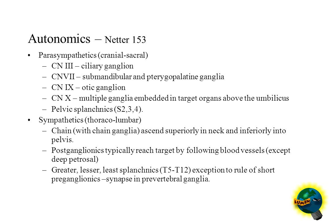 Autonomics – Netter 153 Parasympathetics (cranial-sacral)
