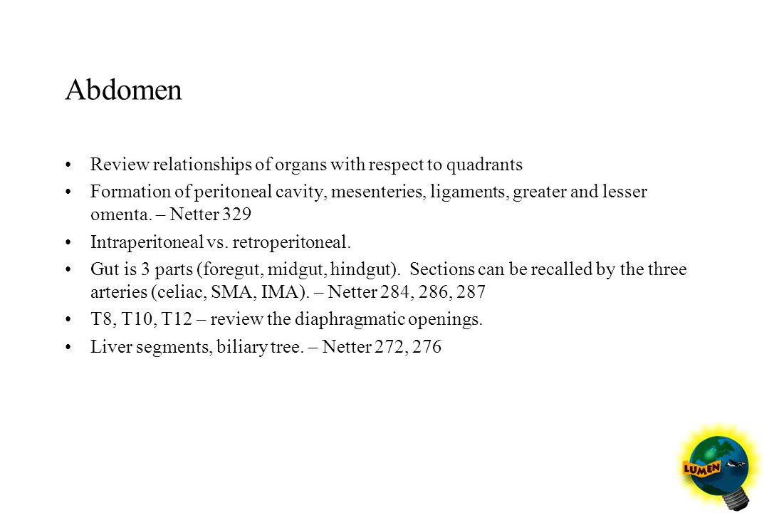 Abdomen Review relationships of organs with respect to quadrants