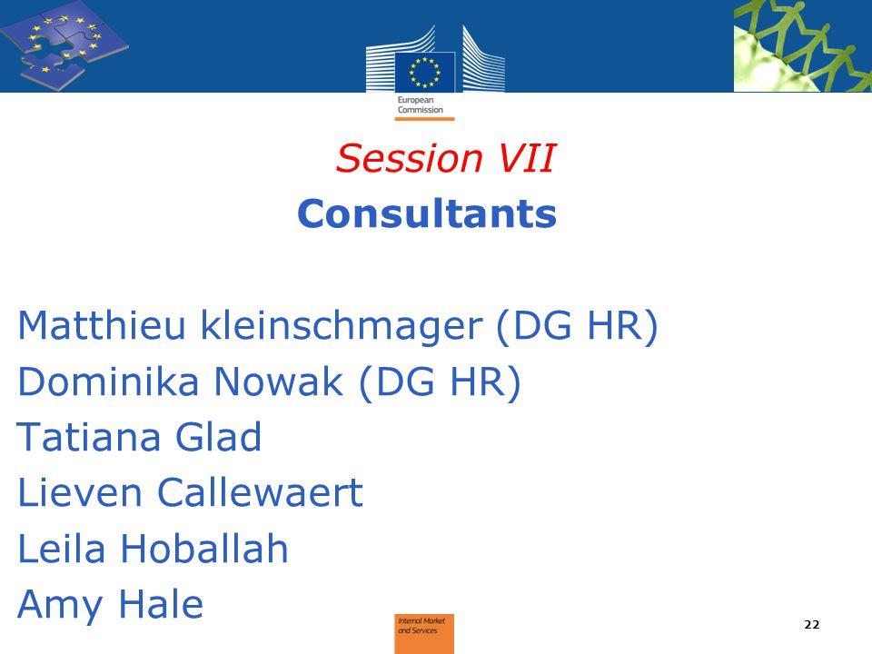 Session VII Consultants. Matthieu kleinschmager (DG HR) Dominika Nowak (DG HR) Tatiana Glad. Lieven Callewaert.
