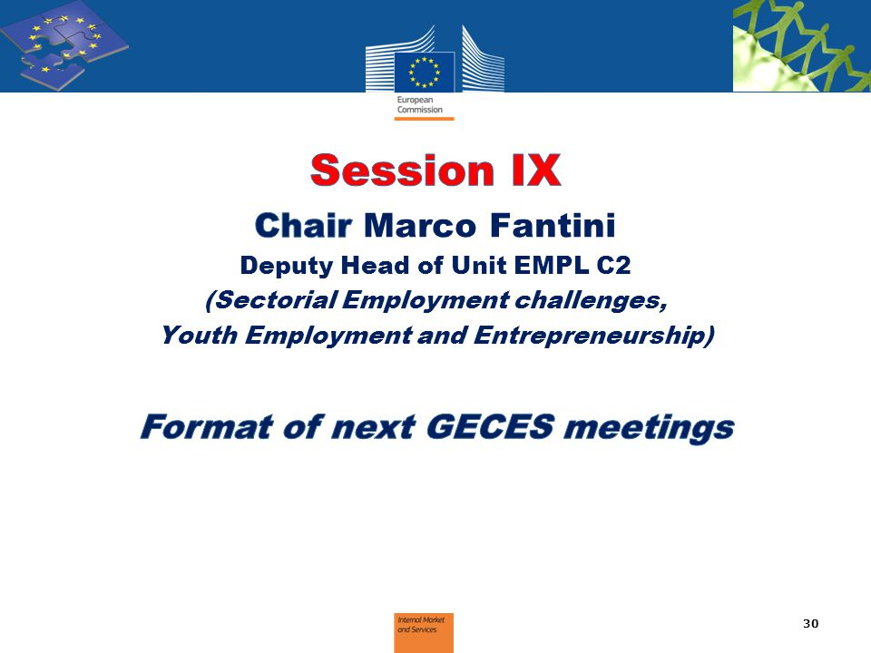 Session IX Chair Marco Fantini Format of next GECES meetings