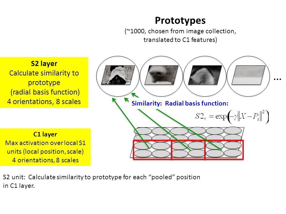 … Prototypes S2 layer Calculate similarity to prototype