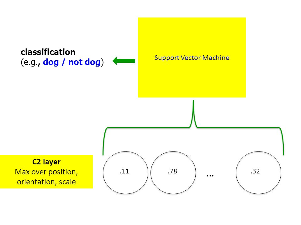 … classification (e.g., dog / not dog) C2 layer
