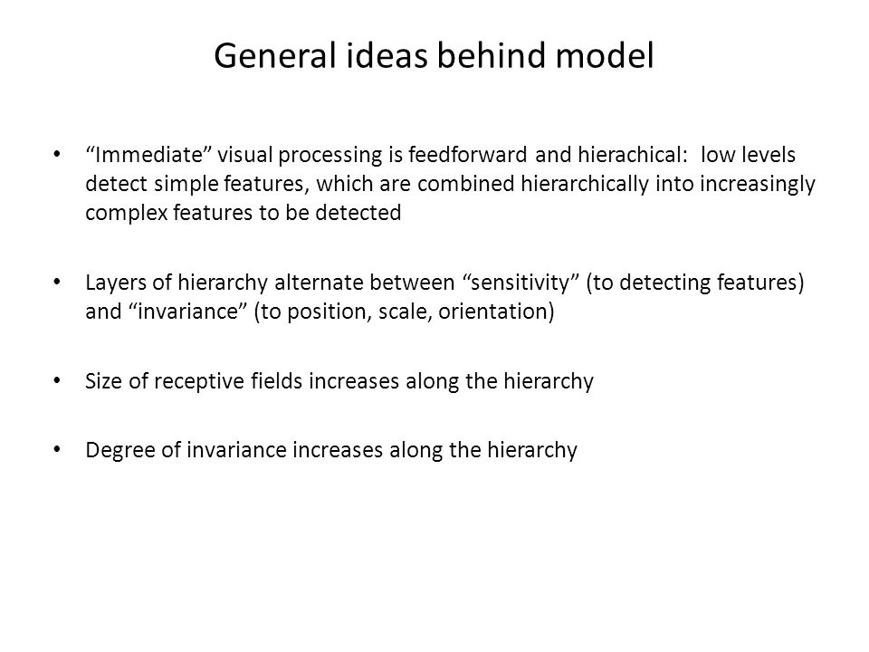 General ideas behind model