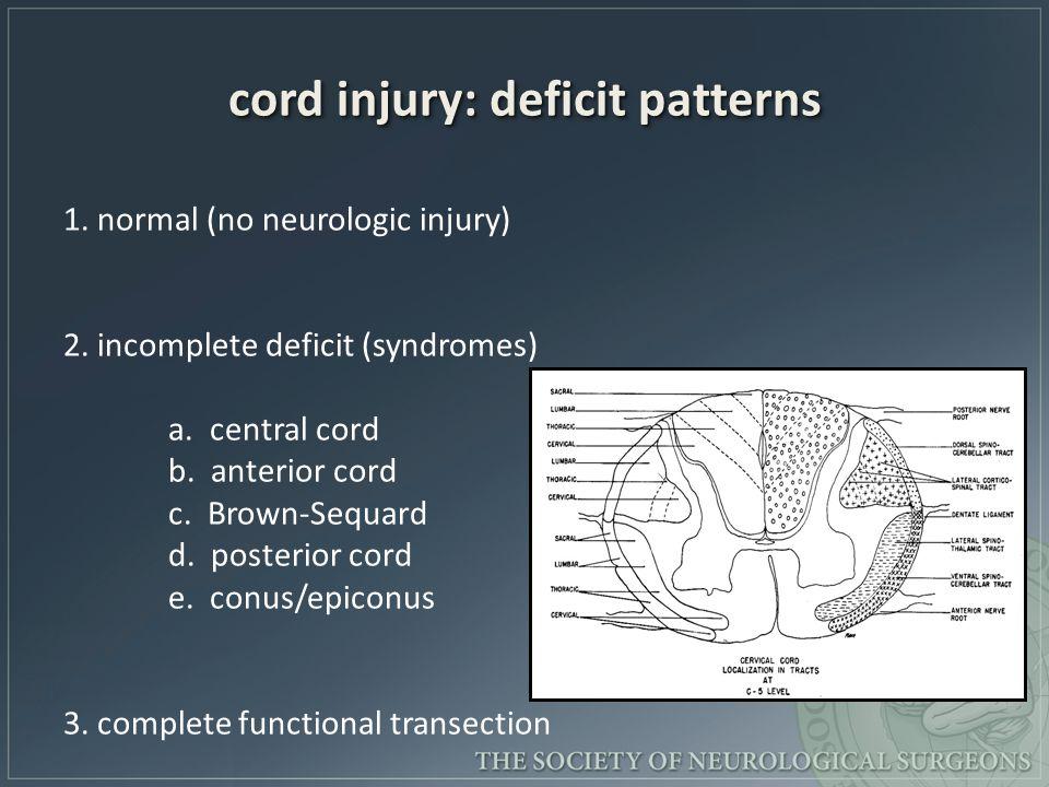 cord injury: deficit patterns