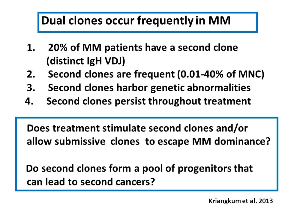 Dual clones occur frequently in MM