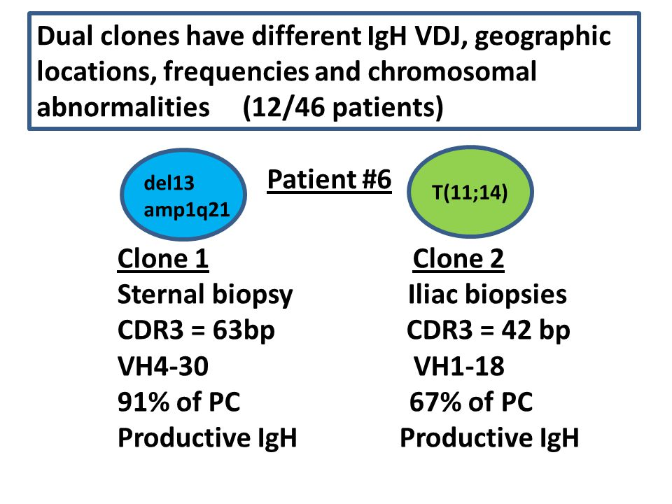 Dual clones have different IgH VDJ, geographic