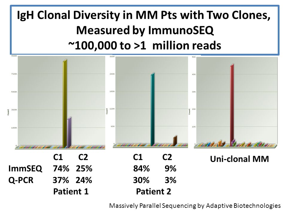IgH Clonal Diversity in MM Pts with Two Clones,