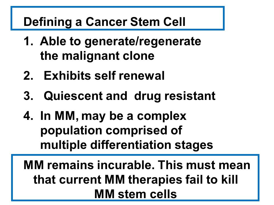 Defining a Cancer Stem Cell