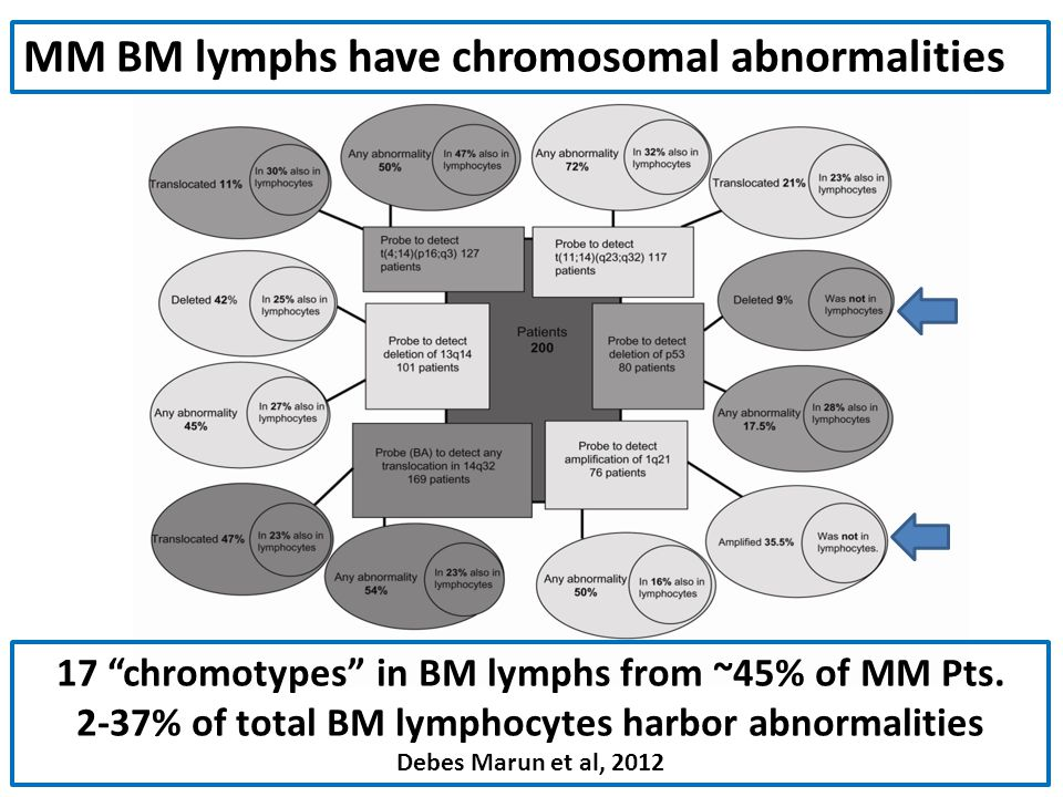 MM BM lymphs have chromosomal abnormalities