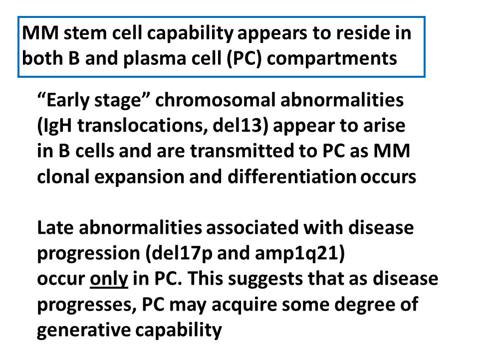 MM stem cell capability appears to reside in