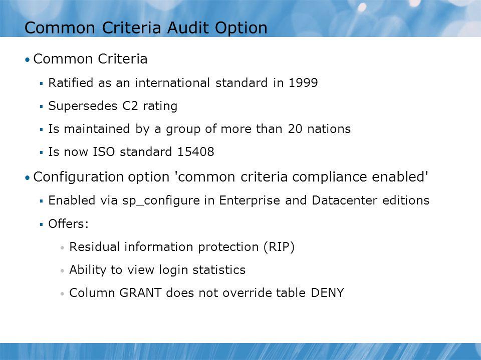 Common Criteria Audit Option