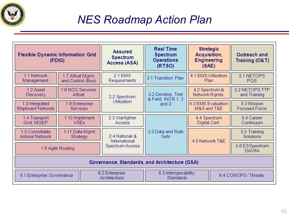 NES Roadmap Action Plan