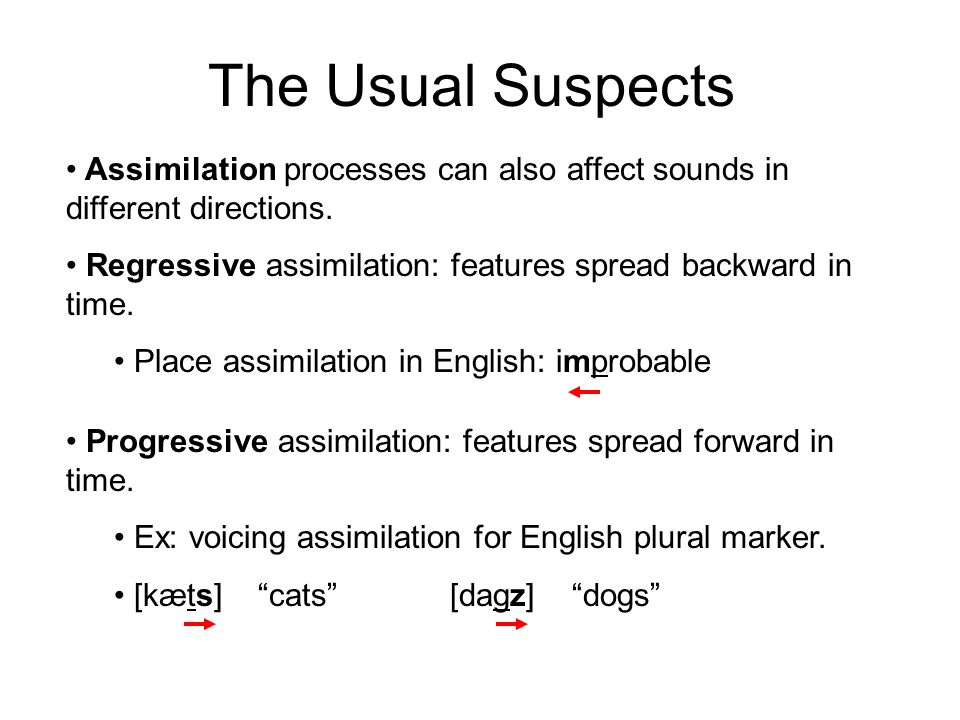 The Usual Suspects Assimilation processes can also affect sounds in different directions. Regressive assimilation: features spread backward in time.