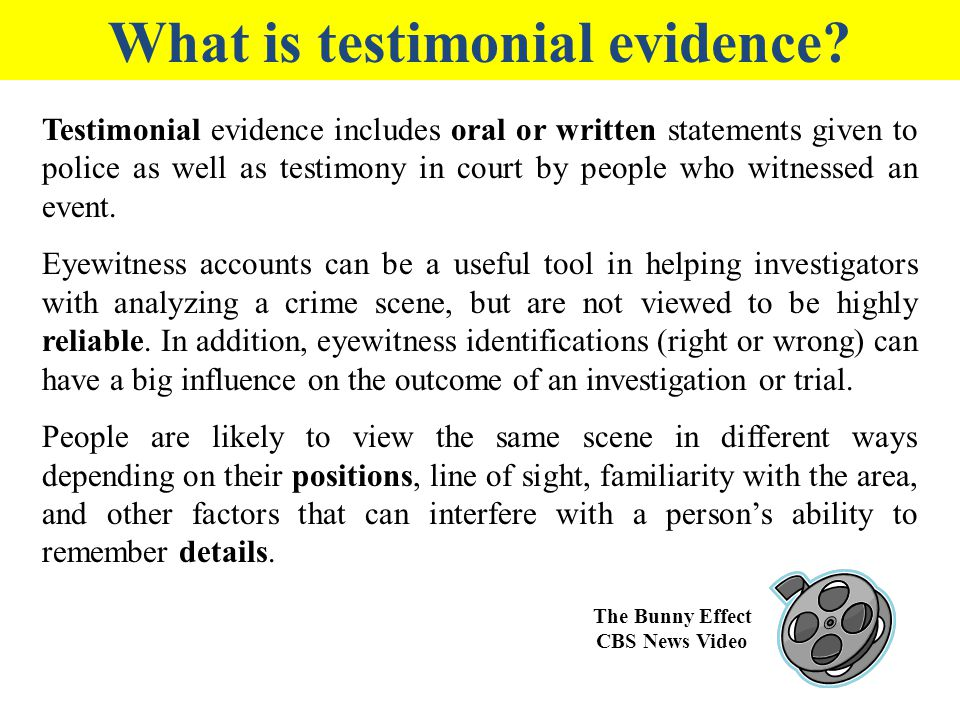 What is testimonial evidence The Bunny Effect CBS News Video