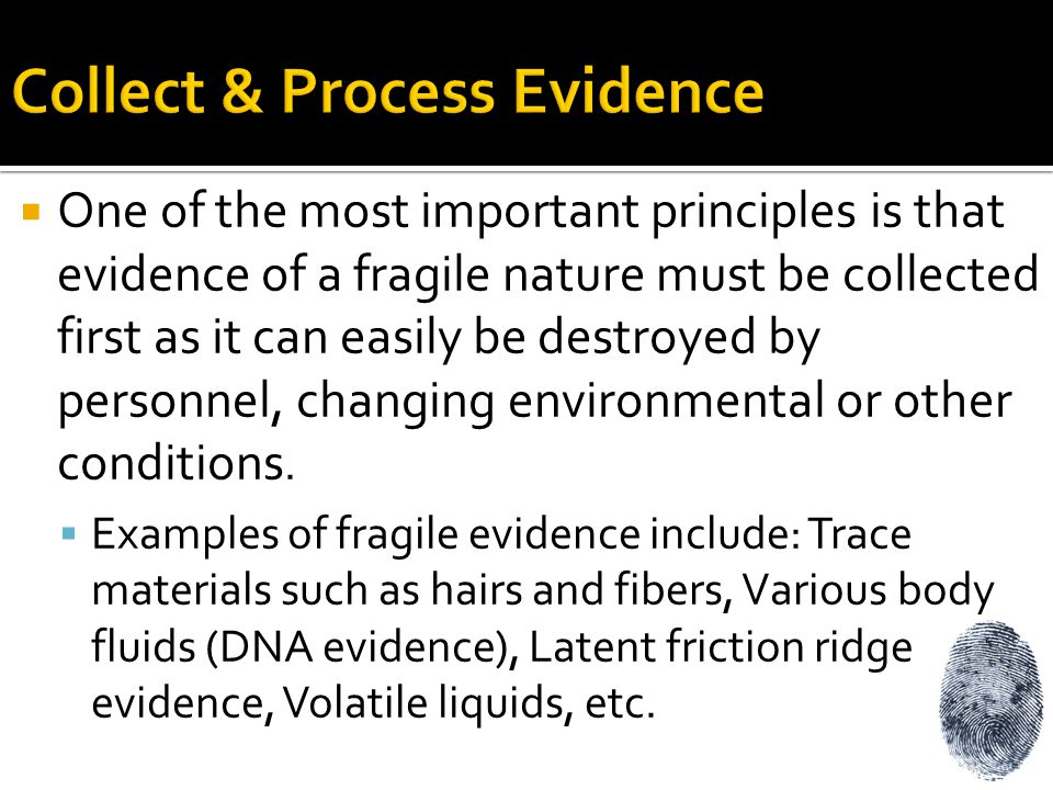 Collect & Process Evidence