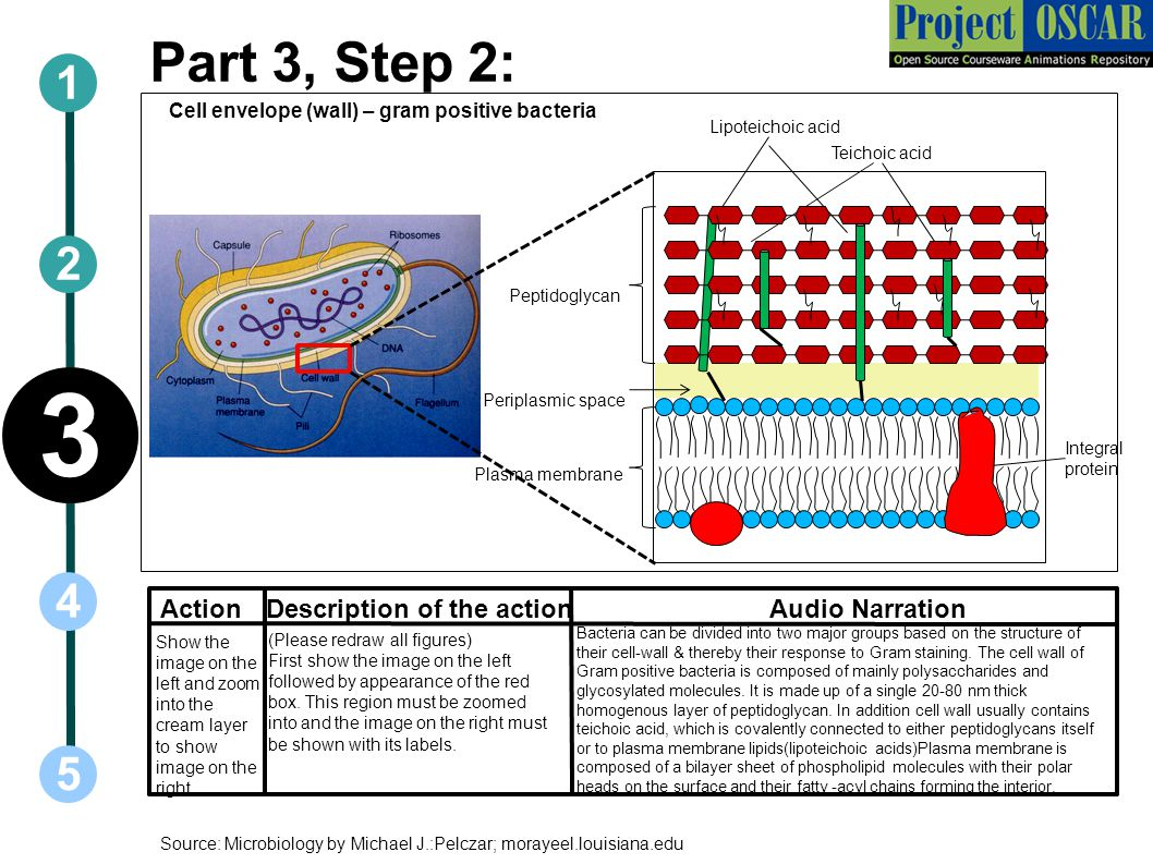 3 Part 3, Step 2: 1 2 4 5 vv Action Description of the action