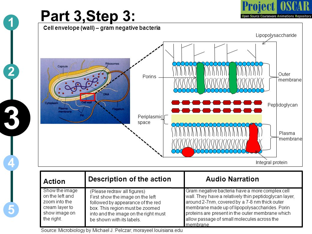3 Part 3,Step 3: 1 2 4 5 vv Description of the action Audio Narration