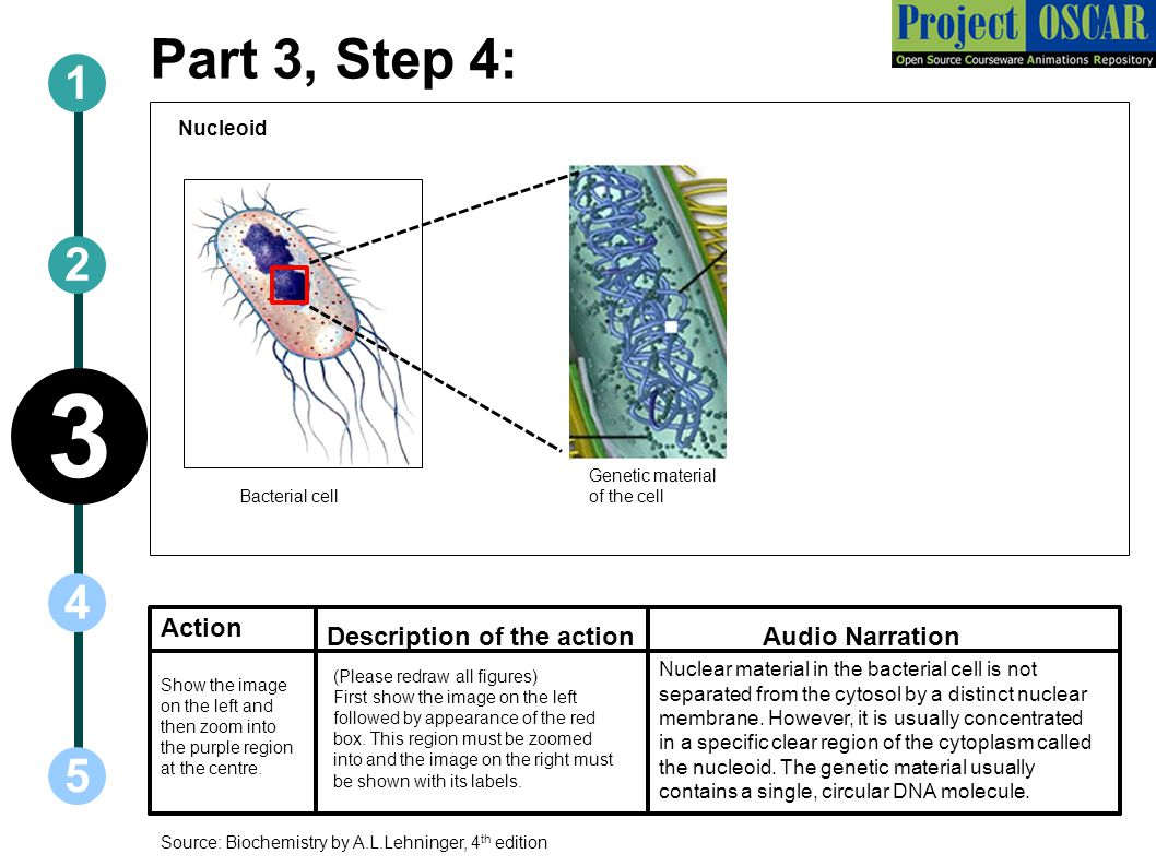 3 Part 3, Step 4: Action Description of the action