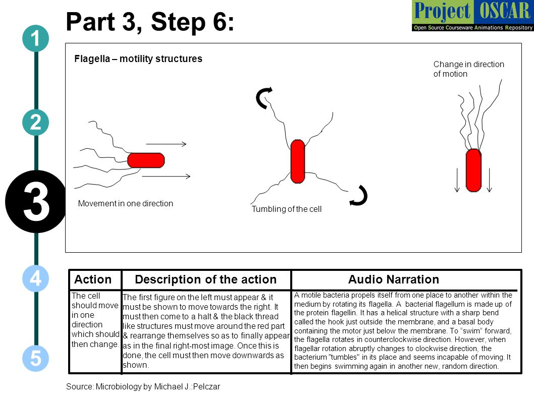 3 Part 3, Step 6: 1 2 4 5 Action Description of the action