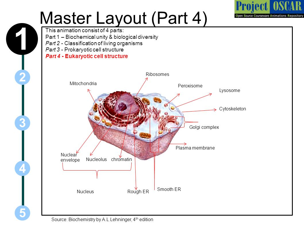 Master Layout (Part 4) 1.