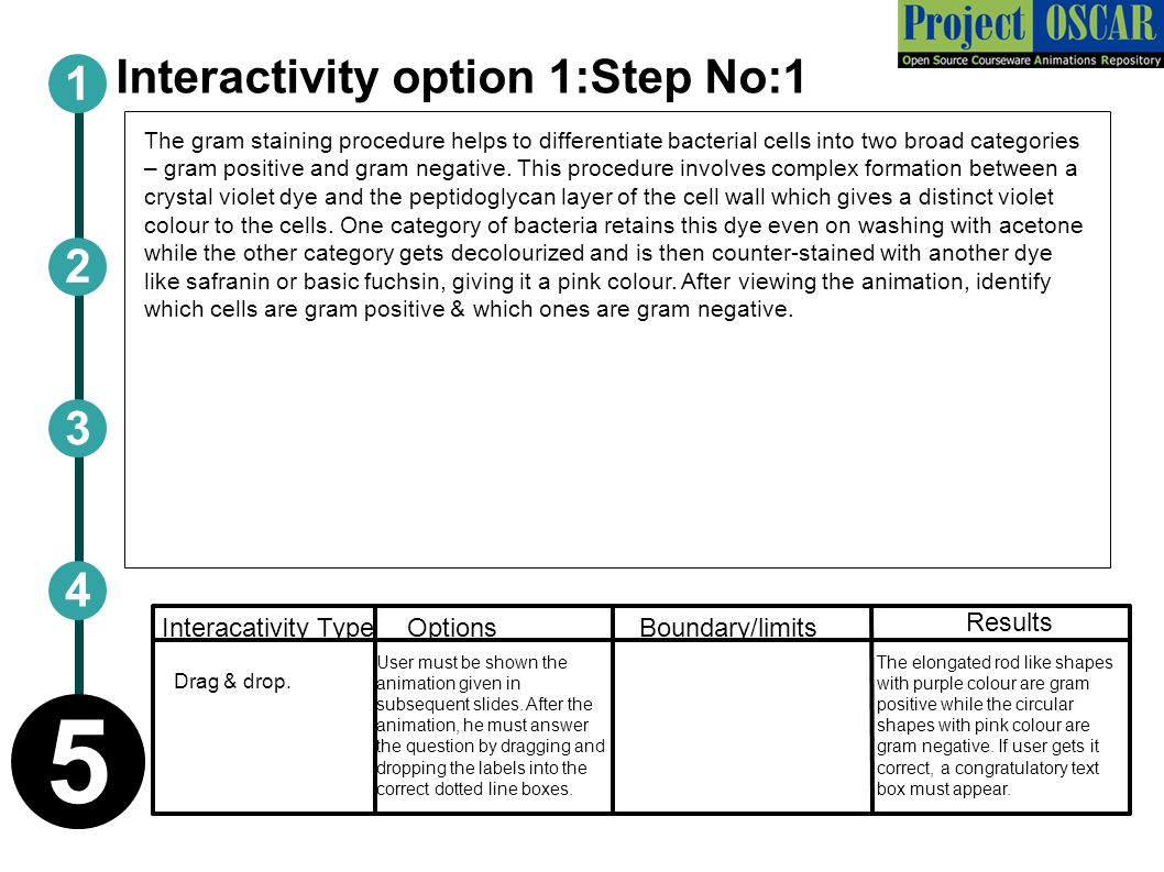 Interactivity option 1:Step No:1
