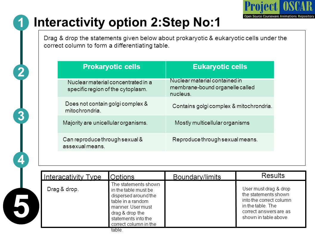 Interactivity option 2:Step No:1