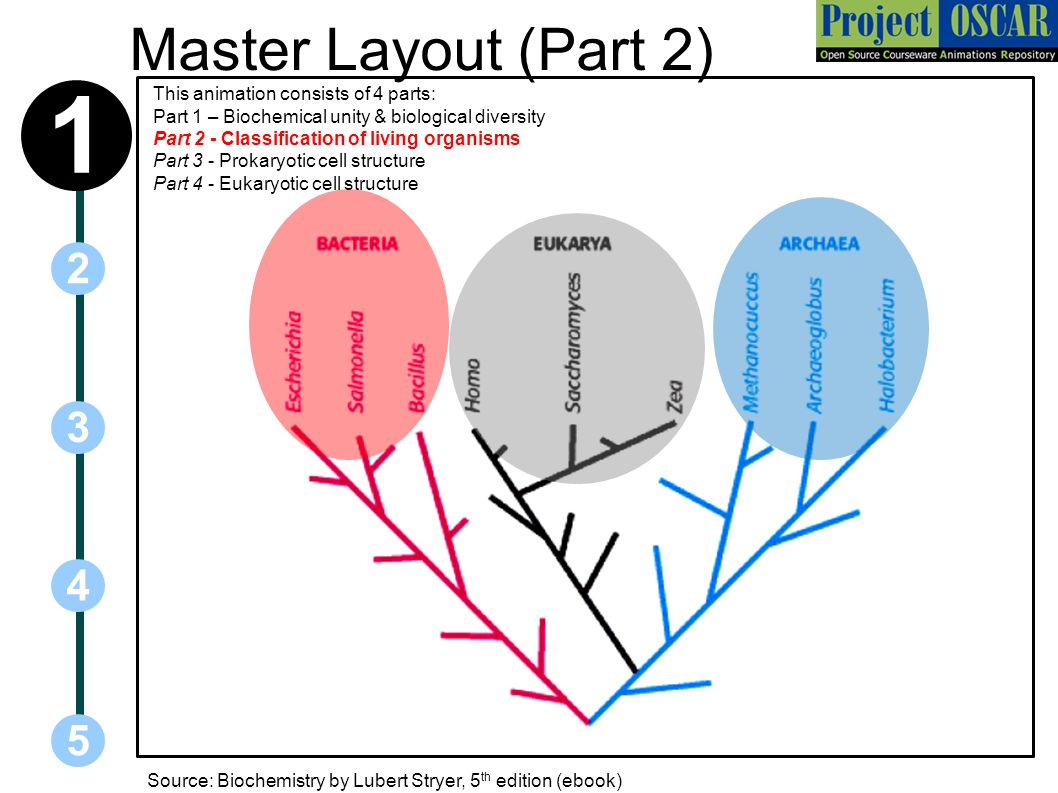 Master Layout (Part 2) 1.