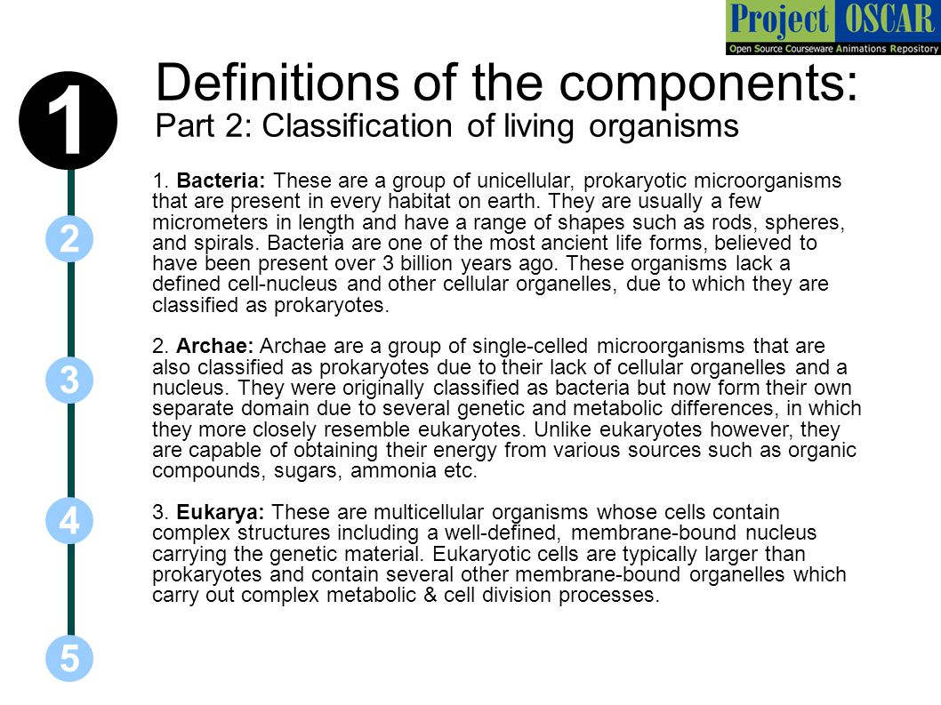 Definitions of the components: Part 2: Classification of living organisms