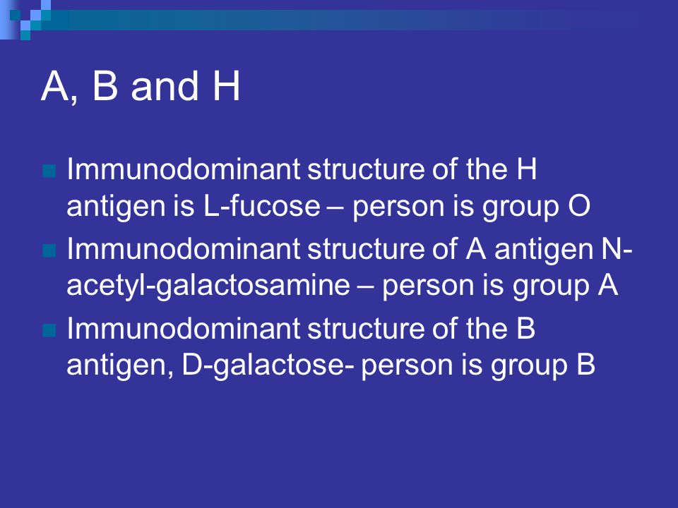 A, B and H Immunodominant structure of the H antigen is L-fucose – person is group O.
