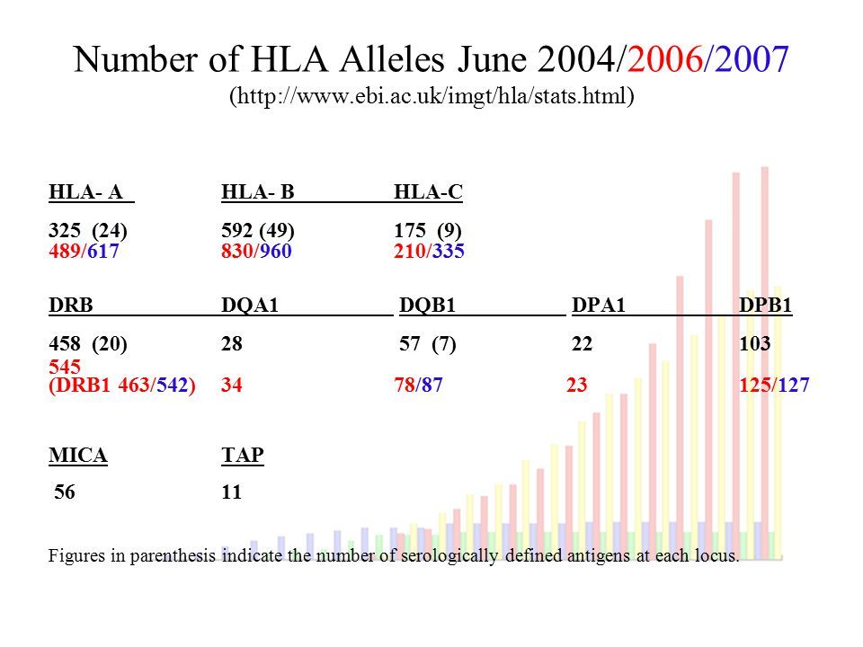 Number of HLA Alleles June 2004/2006/2007 (http://www. ebi. ac
