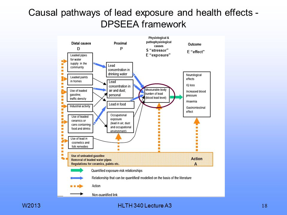 Causal pathways of lead exposure and health effects - DPSEEA framework