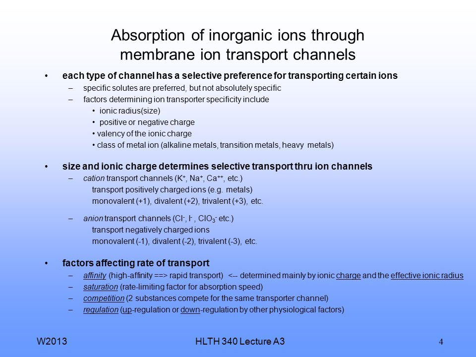 Absorption of inorganic ions through membrane ion transport channels