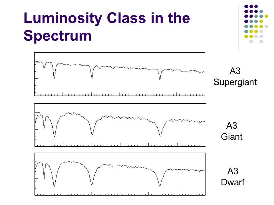 Luminosity Class in the Spectrum