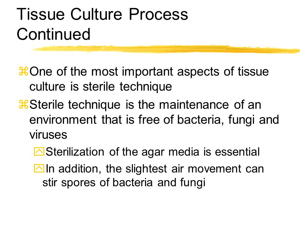 Tissue Culture Process Continued