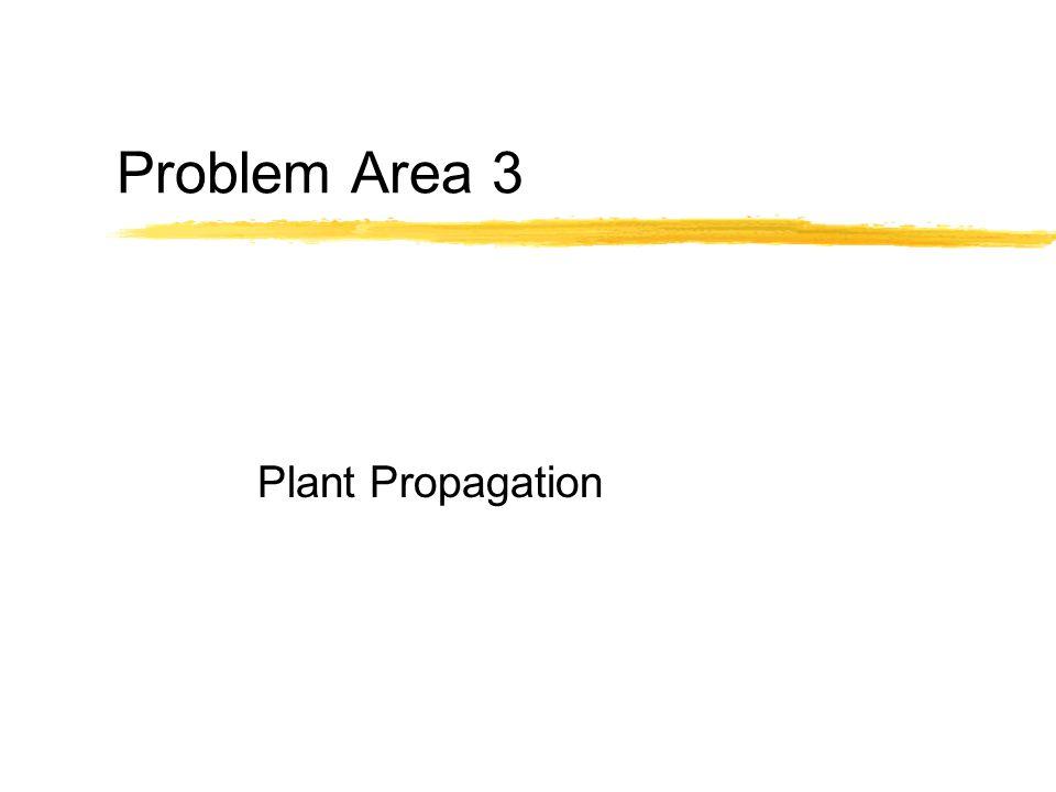 Problem Area 3 Plant Propagation
