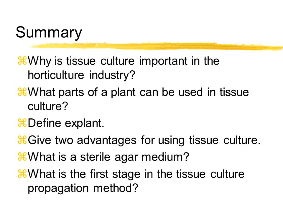 Summary Why is tissue culture important in the horticulture industry