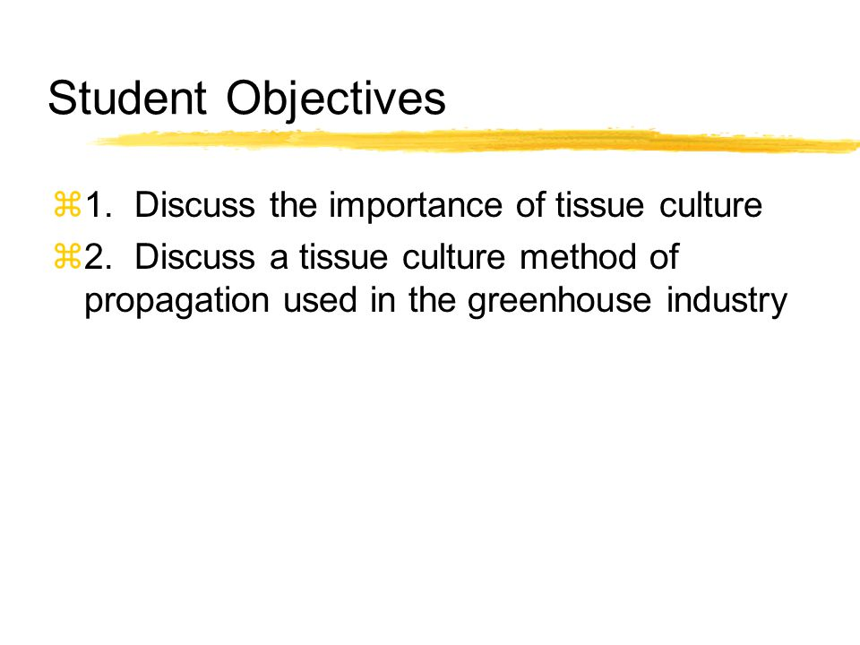 Student Objectives 1. Discuss the importance of tissue culture