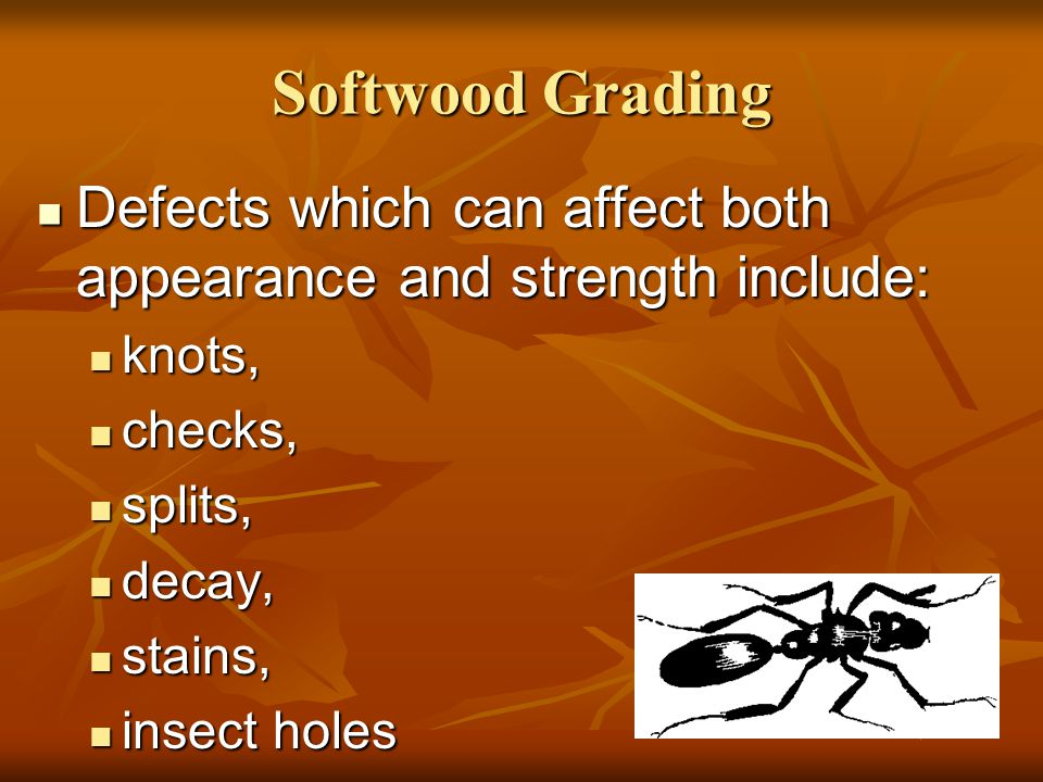 Softwood Grading Defects which can affect both appearance and strength include: knots, checks, splits,